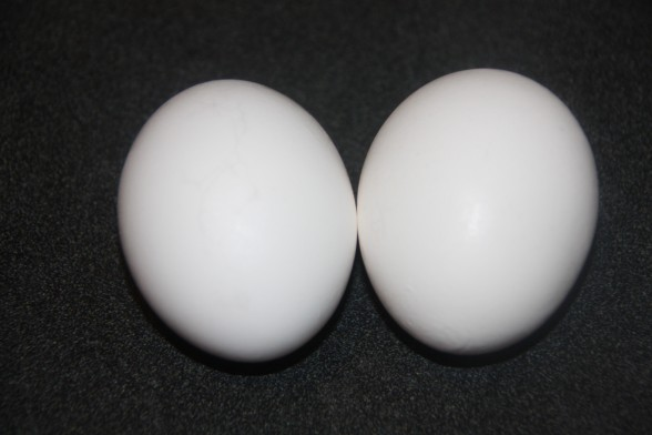 Traditionally room-temperature eggs is recommended, even though I tried cold eggs and my results were the same.